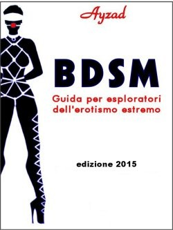 BDSMcover250x344