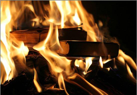 2013/01/libri-bruciati.jpg