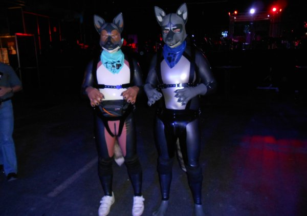 bondage furries at Boundcon 2014